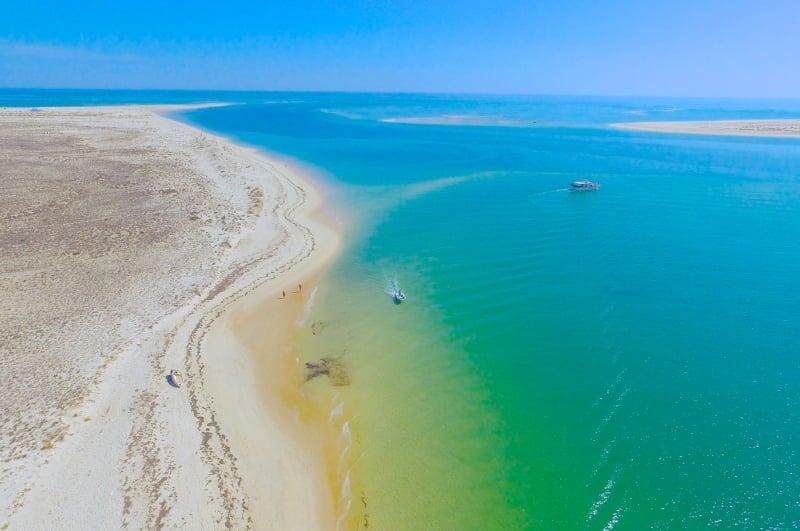 Odyssey Ria formosa Boat Tours