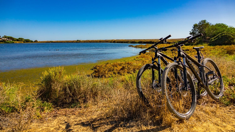 Off-Road Ride Mountain Biking