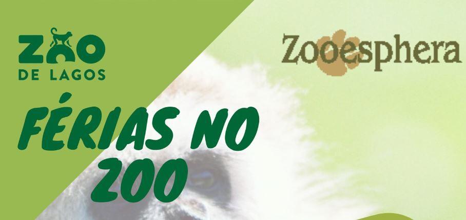 Summer Camps Lagos Zoo