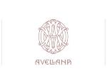 Avellana