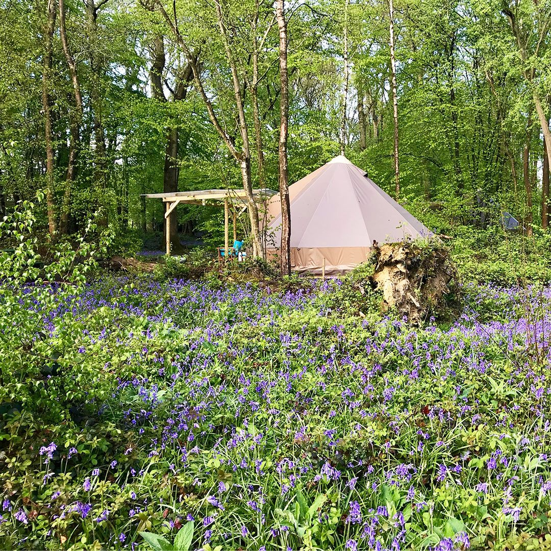 Top Camping Locations in Sussex