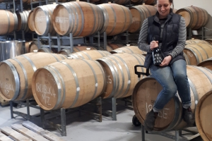 Explore Waipara Wines