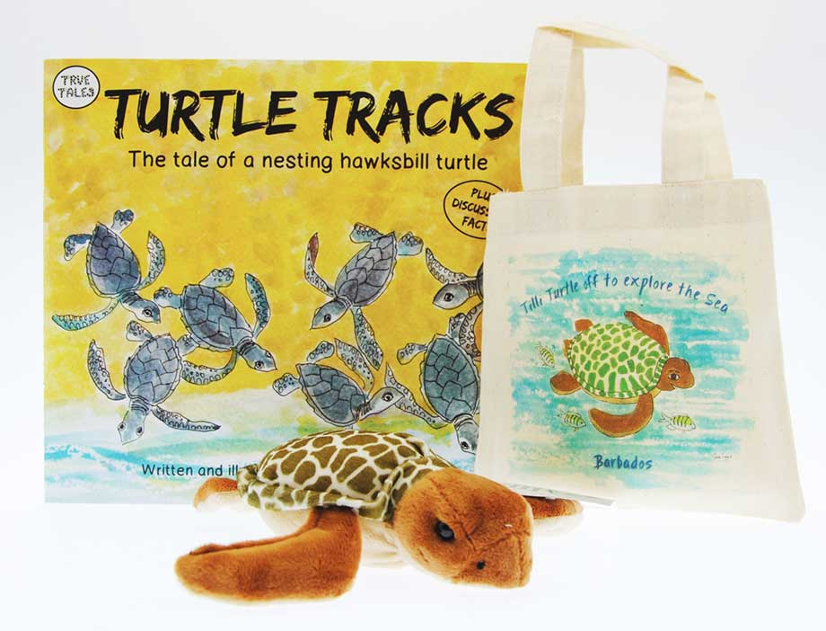 The turtle tracks Family book with a green turtle plush toy