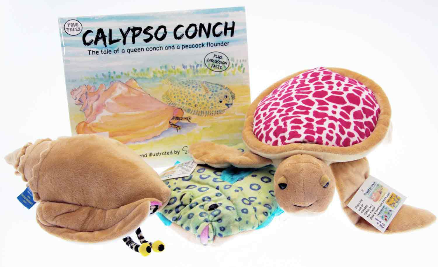 Calypso conch book with a conch shell plush toy and pink turtle plushy