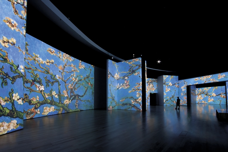 Van Gogh Alive in Alicante