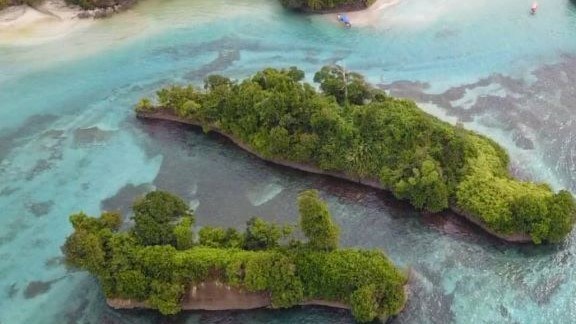 Isla Escudo de Veraguas