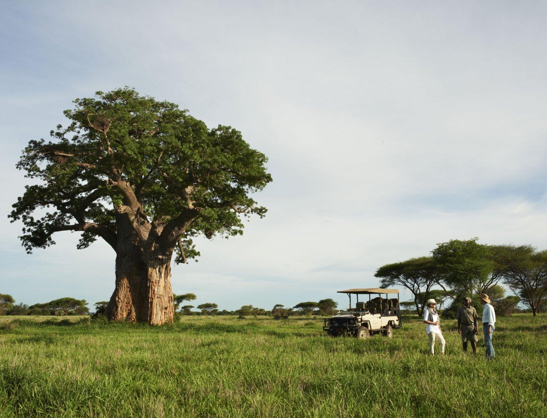 10 Interesting Facts About Zimbabwe
