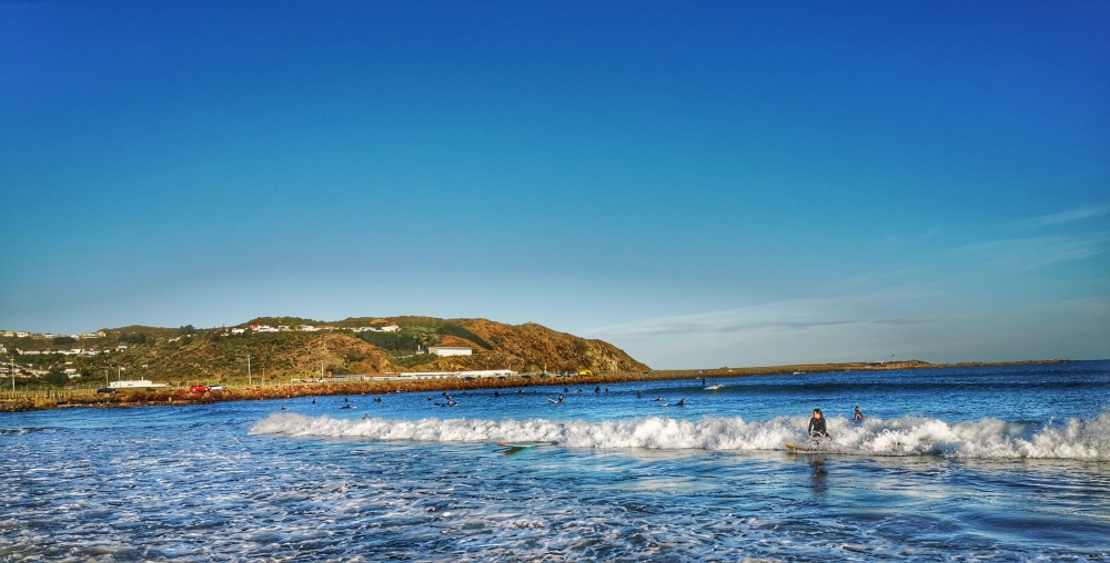 A Guide to Wellington's Beaches