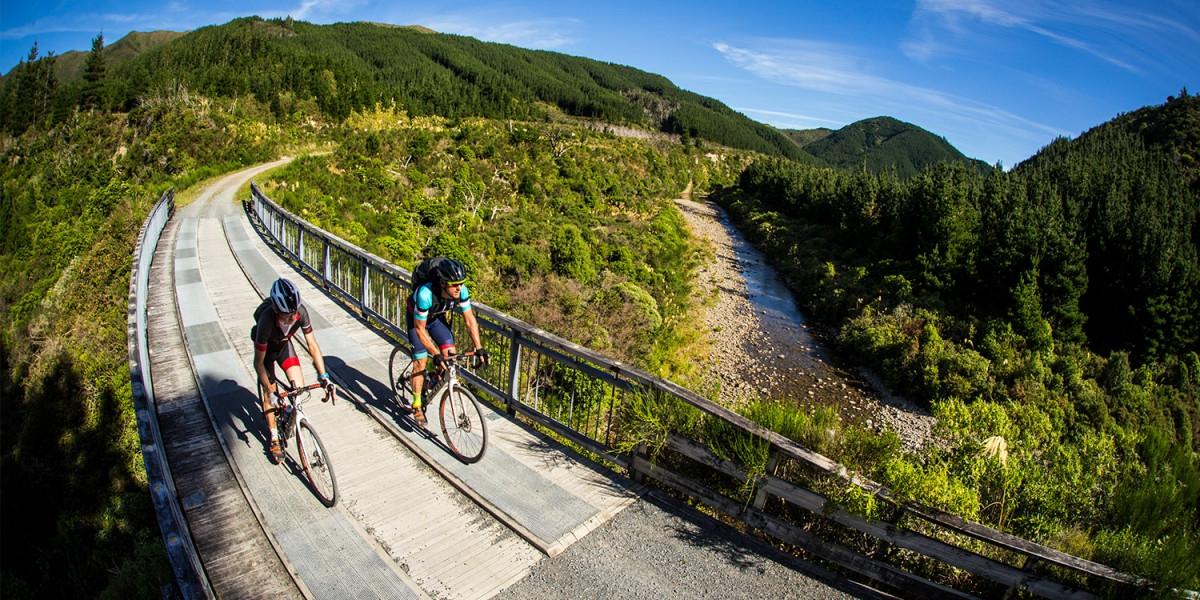 Best Wellington Bike Trails