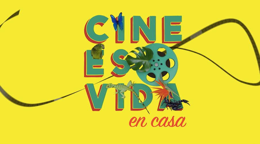 Mastercard Will Award A Prize Of Us $ 5,000 In Digital Cards To The Winning Film Of The Best Film Award By The Public Of The Virtual Iff Panama