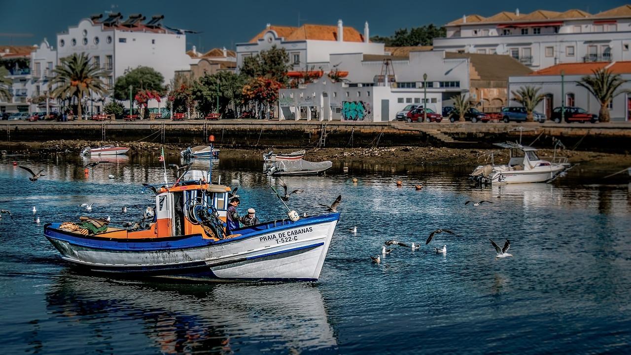 Meet the people: Este Algarve Propriedades