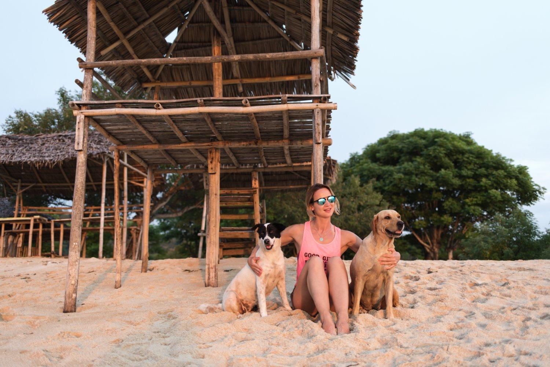 5 pet-friendly hotels in the Riviera Maya