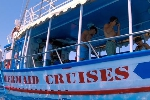 Mermaid Cruises