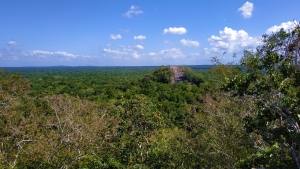 Ancient Mayan City and Protected Tropical Forests of Calakmul