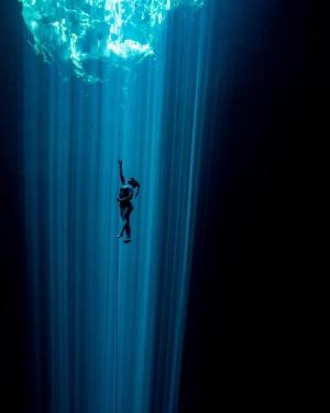 Blackfin Freediving