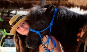Horseback Riding Tour through the Riviera Maya Jungle