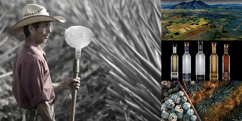'The Mexican Art of Tequila' Webinar w Curated Tequila Kit Tasting