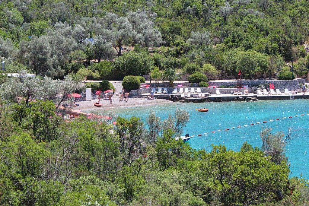 Cove Mirista