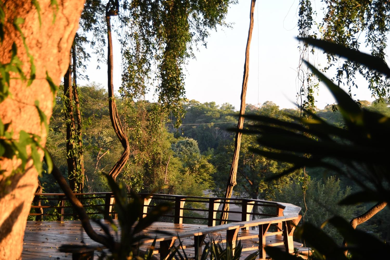 Mokore Safaris