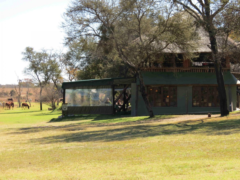 Antelope Park Birding Safari