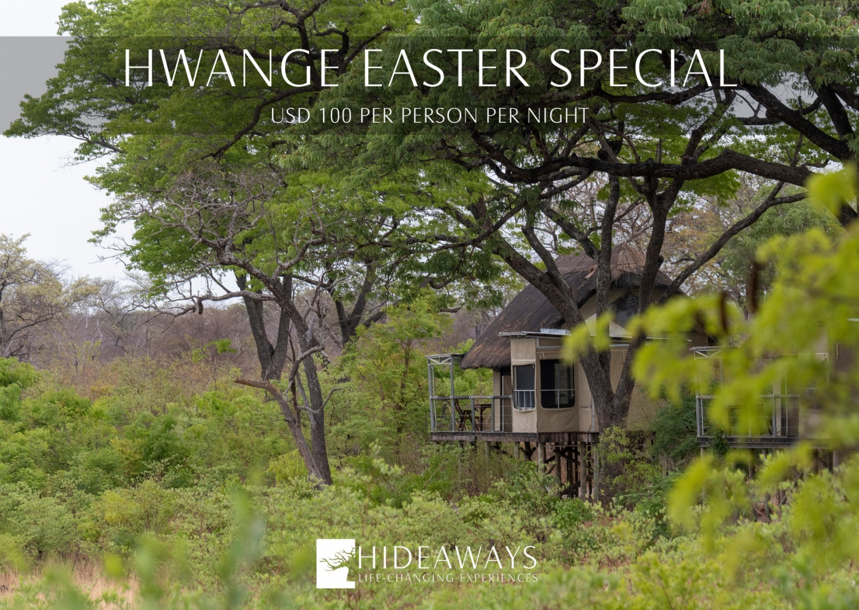 Hwange Easter Special
