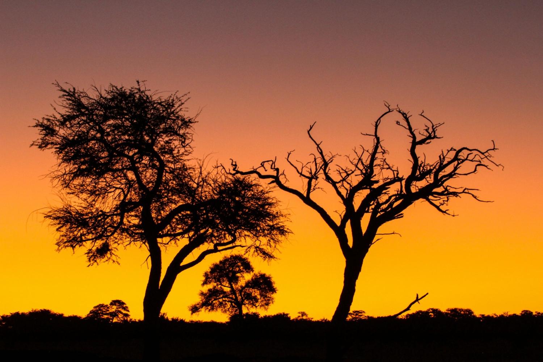 Imvelo Local & SADC Mega Deal