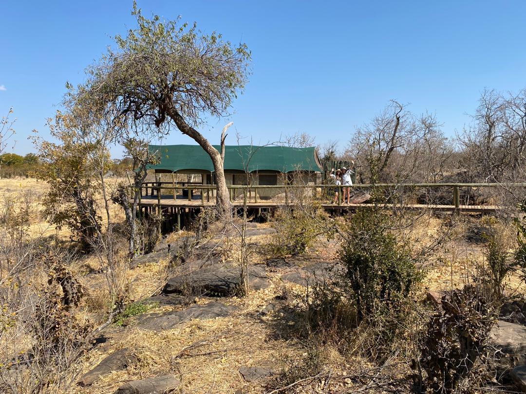 Machaba Safaris Zim Residents Special 2021