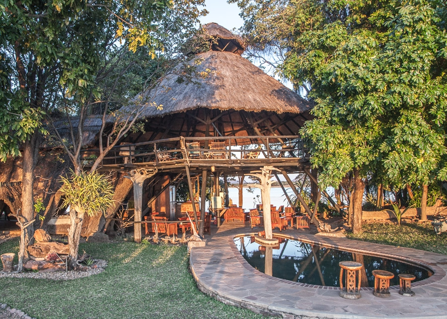 Musango Safari Island Christmas Special
