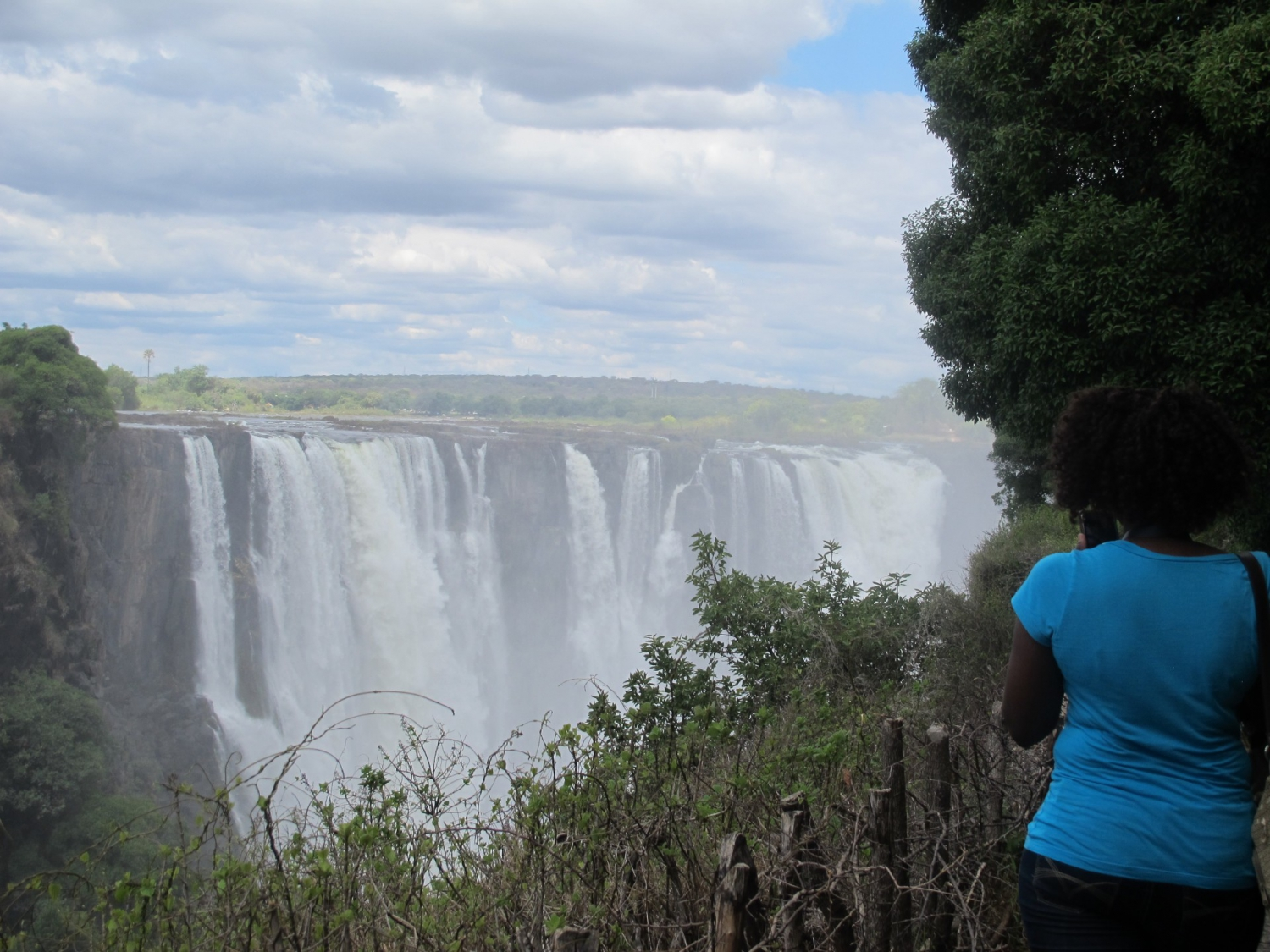 Roar and Snore Vic Falls – Wildlife Encounters