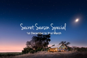 African Bush Camp Secret Season Special
