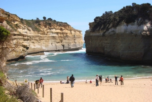 From  The Great Ocean Road Adventure Day Tour