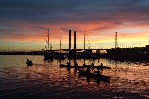 Melbourne Moonlight Kayak Tour