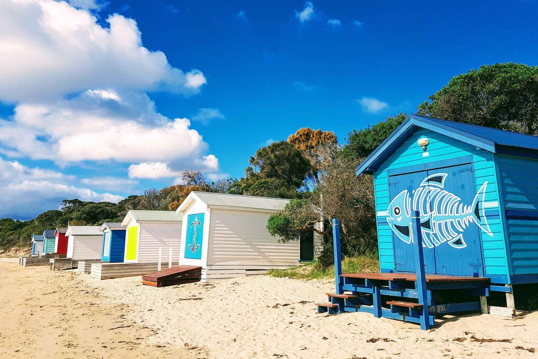 THE 10 BEST Mornington Peninsula Tours for 2020