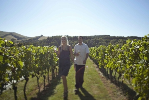 Puffing Billy & Yarra Valley Wine Tour W/O Lunch