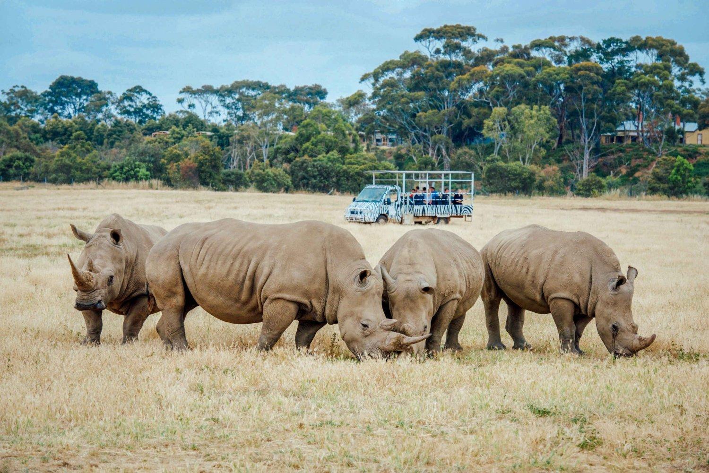 Werribee Open Range Zoo Admission Ticket