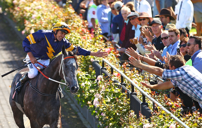 Black Caviar, The Great Horse Raceday