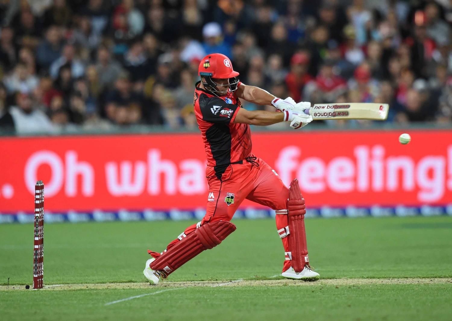 KFC BBL|08, Match 35 - Renegades vs. Stars