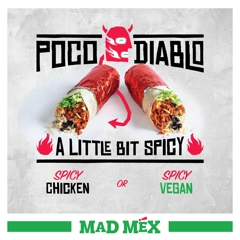Mad Mex Slightly Spicy for Winter