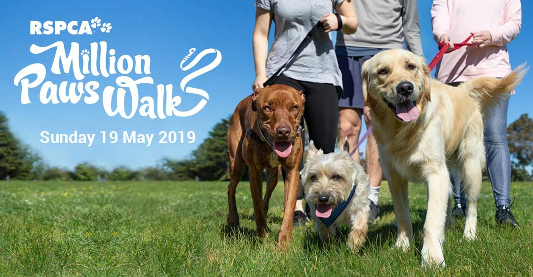 Million Paws Walk Ballarat 2019, RSPCA