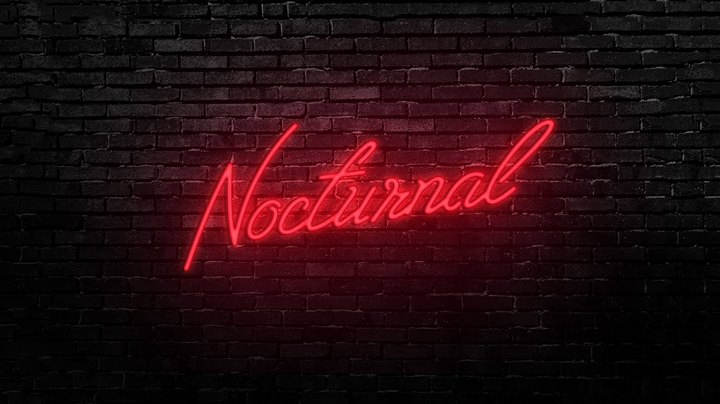 Nocturnal: featuring Dorsal Fins + Jakubi