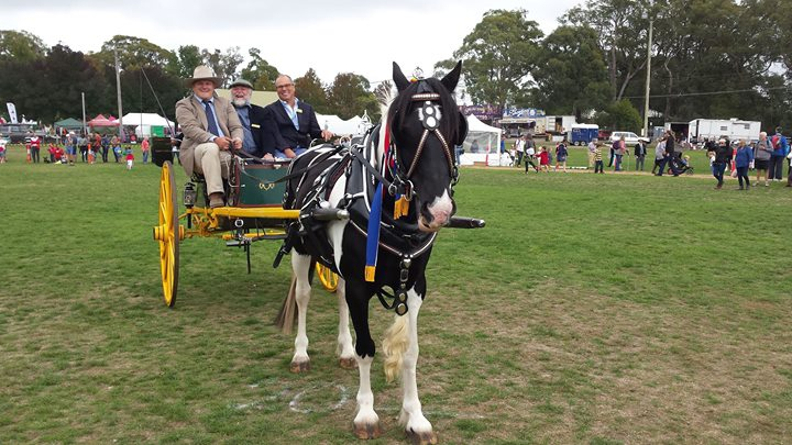The 89th Red Hill Show