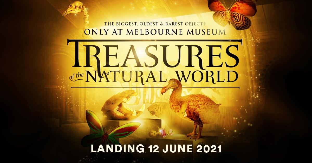Treasures of the Natural World