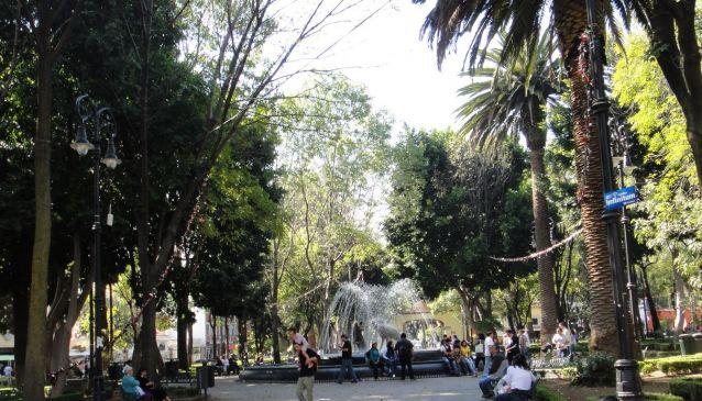 Jardin Centenario