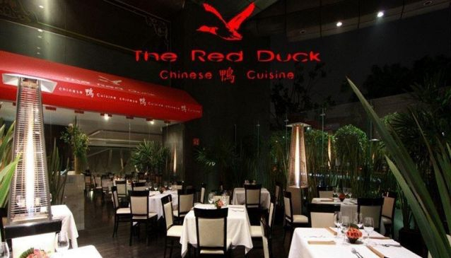 The Red Duck