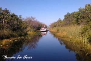 Everglades and Miami: 5-Hour Shore Excursion