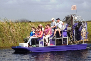 From Miami: Florida Everglades Small Group Airboat Tour