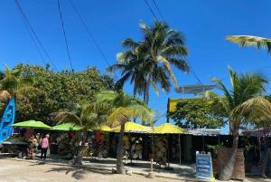 From Miami: Key Largo & Islamorada Private Open-Top Bus Tour