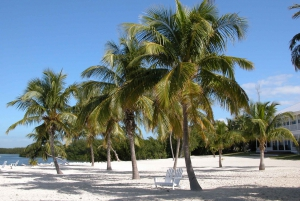 Key West Full-Day Tour from Miami Beach with Options