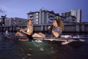 Miami Beach: Night Time Neon Kayak Experience