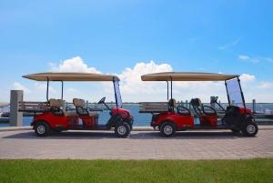 Miami: Bimini Express Ferry with Pickup & Beach Day Pass